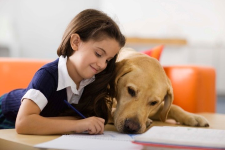Girl with dog and homework
