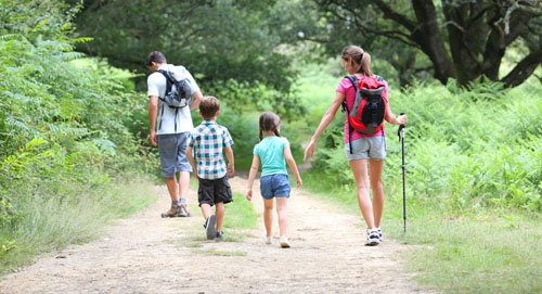 Family of four hiking along trail